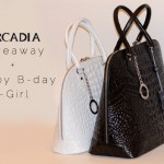 Arcadia Giveaway + It-Girl's first birthday!