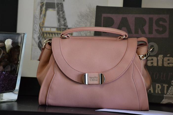 Shopping fall 13 Chloé bag - fashion blogger It-Girl by Eleonora Petrella