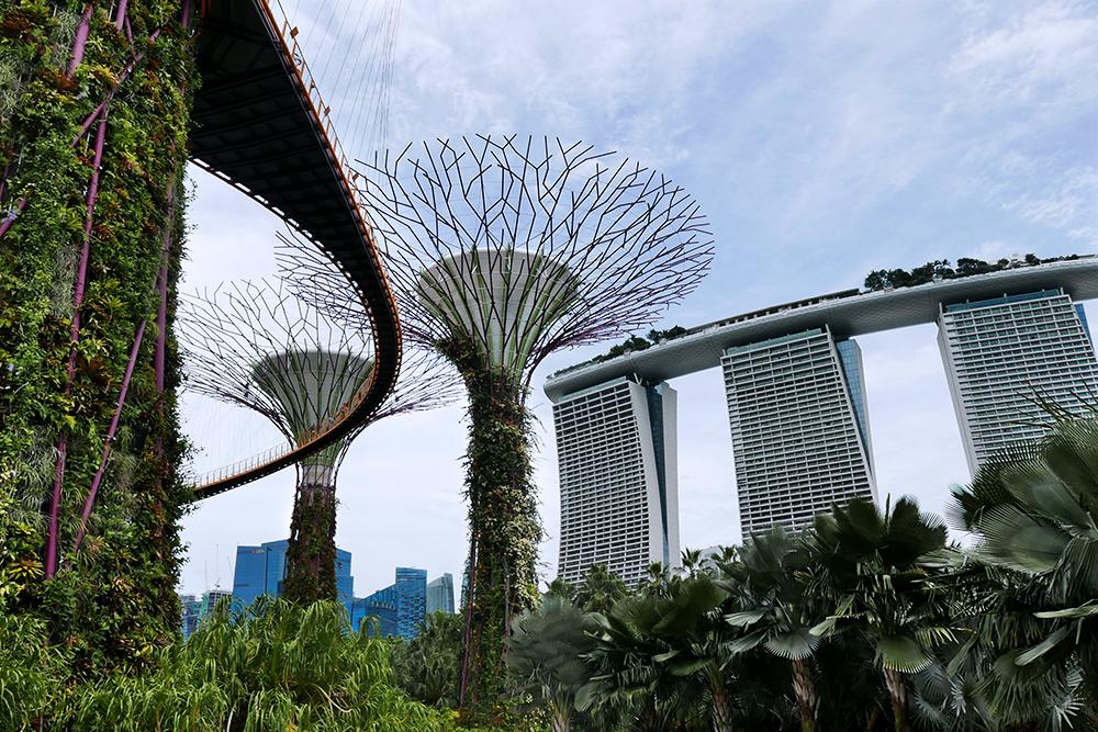Cosa vedere a Singapore: il mio diario di viaggio!