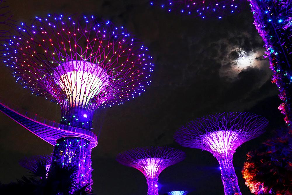 cosa vedere a singapore - 15