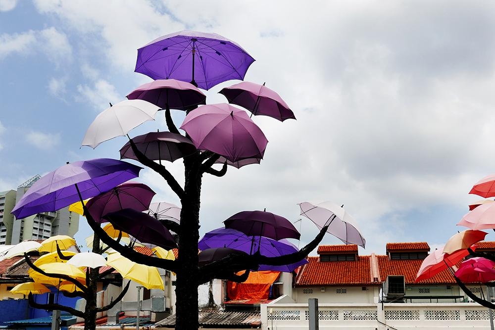 cosa vedere a singapore - 21